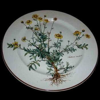 Boch Villeroy earthenware plate